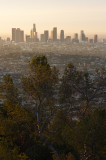 Downtown L.A. in Morning Light