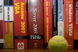 20100220_5585 Wanna Play But Gotta Work (Sat 20 Feb)
