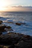 8015 Morning Surf I