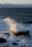 8028 Morning Surf II