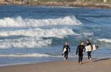 8238 The Three Surfing Amigos