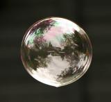 zeepbel.jpg