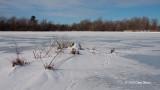 Middle of Mud Lake I