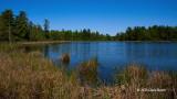 A Pond With No Name