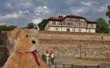Visiting Kalemegdan Fortress....