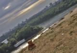 Kalemegdan View on Usce