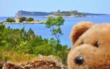 Mamula  Island on the right