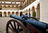 The Cannon Bear