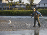 Arthur Morris playing with a white morph Reddish Egret