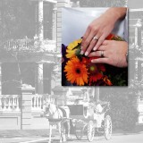 Kellie Wedding Album