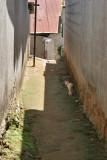 Uno de los Callejones del pueblo con un  Peaton Especial