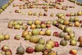 Detalle de la Alfombra con Fruta del Lugar