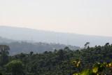 Vista Panoramica del Poblado y las Plantaciones de Cafe