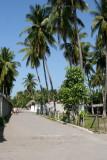 Calle Tipica del Lugar