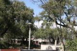 Parque Central (en Remodelacion)