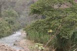 El Rio Polochic Corre Paralelo a la Ruta a la Cabecera