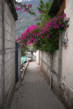 Callejon representativo del Area Urbana