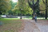 Parques de Apacible Calma en el Centro de la Ciudad