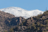 Snow Capped Catalinas