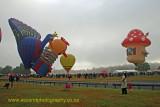 Balloons Over Waikato 2010