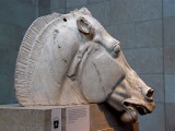 The Horse from the Parthenon