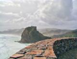 Lion Rock from Tasman Lookout