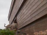 The Noah Ark At Ma Wan