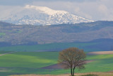 West Macedonia (Greece) in spring 2009
