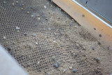 Het zand wordt minitieus gezeefd