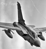Nose down    1/1250s f/2.8 at 300.0mm iso200