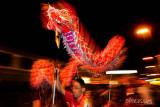 The dragon dance (7699)
