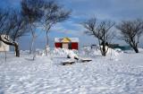 Travel Images - Hokkaido in Winter