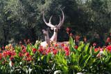 Red Hill (Hongshan) Park, Urumqi (Oct 07)