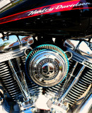 A lot of Harley shine at Palm Spring...