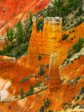 Bryce Canyon,when the sunlight falls: Unforgettable Dream ...
