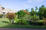 C1474 Gardens of the Royal Tahitien Hotel