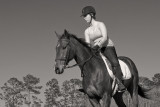 Late Afternoon Canter