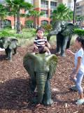 Sobre el elefante