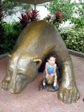 Con los osos