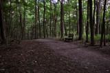 Trail Rest Stop