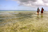 Collecting seaweed on Nungwi Beach