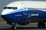 LION BOEING 737 900ER SUB RF IMG_1893.jpg
