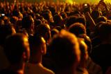 Coldplay crowd.jpg