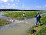 Fishing for Bait  - River Rise 2008