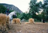 With haystacks in Kalash
