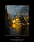 Yosemite: November 2007