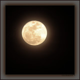 Third Rock - First Moon - First Full - Second Month - 2010 Astro-Twittergraph