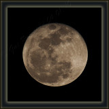 Wolf Moon Close To Full Size