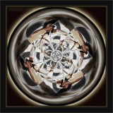 A Mandala Of Dance In Shadow and Height