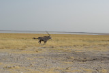 Namibia 09